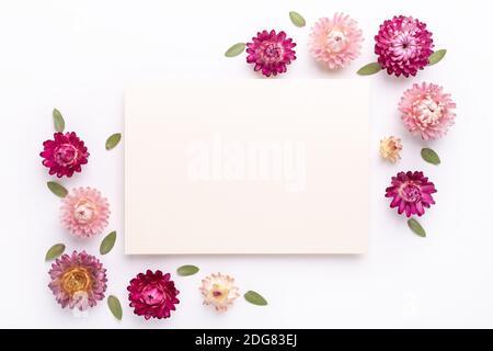 Blumenzusammensetzung. Papierrohling und Rahmen aus trockenen Blumen auf weißem Hintergrund. Flach liegend. Draufsicht. Kopierbereich - Bild - Stockfoto
