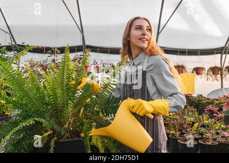 Frau im Gewächshaus mit gelber Gießkanne in der Nähe von Farn. Gelbe und graue Farben 2021.
