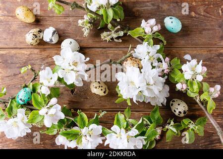 Dekor bunte Ostern-Wachteleier mit Frühling Blüte Zweig mit Kirschblüten Blumen über alten hölzernen Hintergrund. Ansicht von oben. Stockfoto