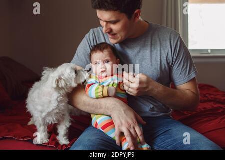 Junge kaukasische Vater Eltern halten neugeborenes Baby und spielen im Gespräch mit kleinen Hunden Haustiere im Schlafzimmer zu Hause. Authentischer Lifestyle lustig offen Moment. Single Dad Familienleben Konzept - Stockfoto