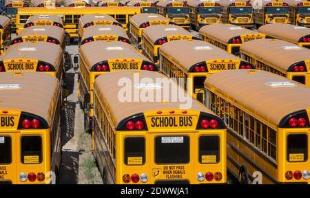 Ein Lagerhof voller neuer nordamerikanischer Gelber Schule Busse, Die Auf Die Lieferung An Kunden Warten Stockfoto