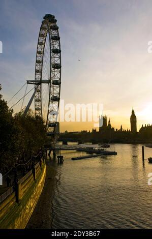 The Houses of Parliament und Big Beat Sonnenuntergang, hinter dem London Eye gesehen, ein riesiges Riesenrad am Südufer der Themse, London, England.