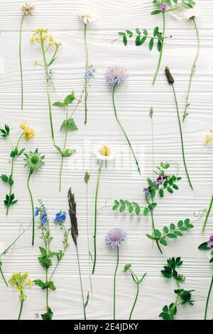 Frühlingsblumen flach liegen. Schöne Wildblumen Stängel und blühende Blütenblätter Komposition auf weißem Holz, florales Muster. Hallo Frühling und grünes Öko-Konzept