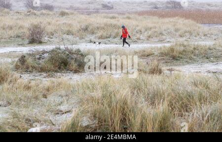 Eine Frau geht mit einem Hund auf Bull Island in Dublin, als Teile von Großbritannien und Irland am Sonntagmorgen von Schnee und Eis erwacht sind. Stockfoto