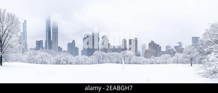 Panoramablick auf den schneebedeckten Central Park mit der Skyline von New York City im Hintergrund.