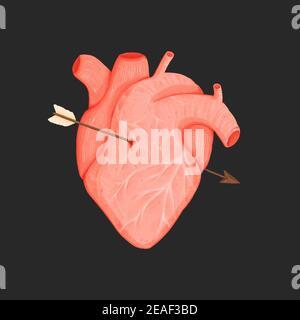 Menschliches Herz mit Amors Pfeil isoliert auf schwarzem Hintergrund. Handgezeichnete Abbildung