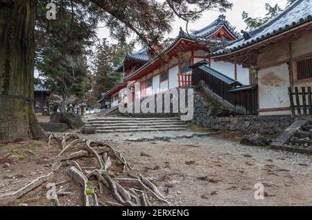 Tamukeyama Hachimangu Shinto-Schrein auf dem Gelände des Todaiji-Tempels in Nara, Japan