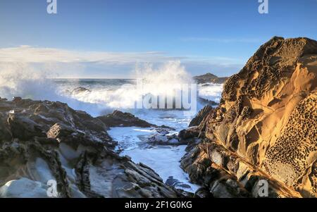 Tafoni mit Wild Surf, Salt Point State Park, Sonoma County, Kalifornien Stockfoto