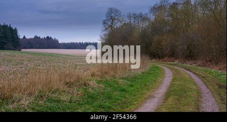 Eine malerische gewundene Strecke durch Wälder und Felder, North Wessex Downs, AONB - Stockfoto