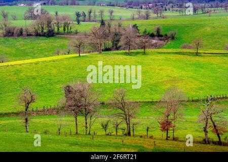 Frankreich, Centre, Auvergne, Winterlandschaft in der Nähe von Saint Constant, im Cantal.