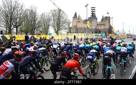 Abbildung Bild zeigt das Pack von Fahrern am Start Der 105. Ausgabe der 'Ronde van Vlaanderen - Tour des Flandres - Flandern-Rundfahrt