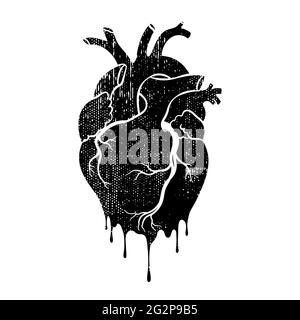 Grungen Sie das menschliche Herz. Anatomisch realistisches tropfendes Herz, Strichgrafiken, Vektorgrafik.