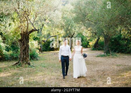 Braut mit einem Blumenstrauß und dem Bräutigam Gehen Sie Seite an Seite in den Olivenhain und halten Hände