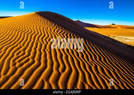 Sossusvlei Sanddünen - Salz- und Tonpfanne umgeben von hohen roten Sanddünen in der südlichen Namib Wüste in Namibia