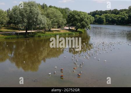 Moskau, Russland. Juli 2021. Blick auf einen Teich im Tsaritsyno-Museumsreservat, im Süden Moskaus. Kredit: Mikhail Japarize/TASS/Alamy Live Nachrichten