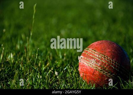 Cricketball Spieler schlagen
