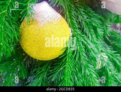 Eine goldene Weihnachtskugel, mit Schnee bedeckt, auf dem Hintergrund eines Tannenzweiges, Weihnachtsschmuck auf der offenen, Banner.