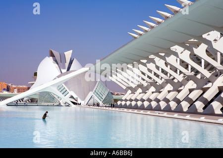 Valencia-Spanien-Stadt der Künste und Wissenschaft Kunstpalast Reina Sofia Hemisferic und Wissenschaftsmuseum Principe - Stockfoto