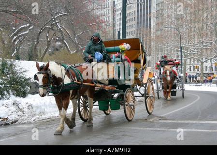 Pferd und Wagen. Treiber eingepackt gegen die Kälte. Central Park. New York City. Winterschnee. USA. - Stockfoto