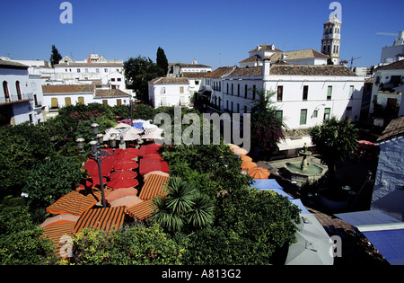 Spanien, Andalusien, Costa Del Sol, Olivenbäume entfernt in der Altstadt von Marbella - Stockfoto
