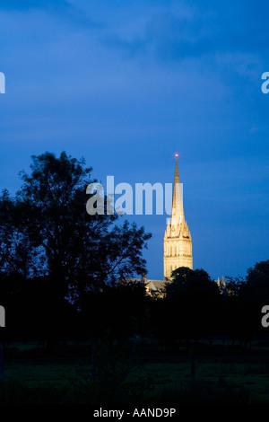Salisbury Kathedrale Spire beleuchtet bei Nacht Wiltshire England - Stockfoto