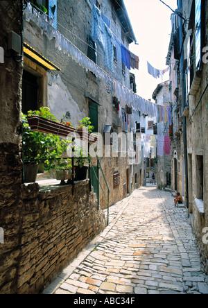 Rovinj, Istrien, Kroatien - Stockfoto