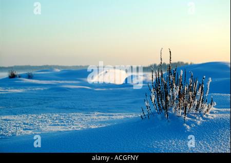 Winterlandschaft an Moskjaera im See Vansjø in Østfold, Norwegen. Vansjø ist ein Teil des Wassers, das System namens - Stockfoto