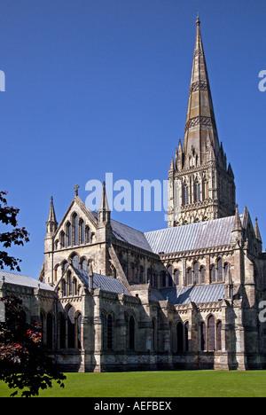 Kathedrale von Salisbury, Wiltshire, England - Stockfoto