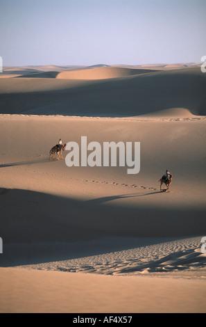 Benedict Allen und sein Team von Kamelen verhandeln eine Sanddüne während seiner Reise entlang der Skelettküste - Stockfoto