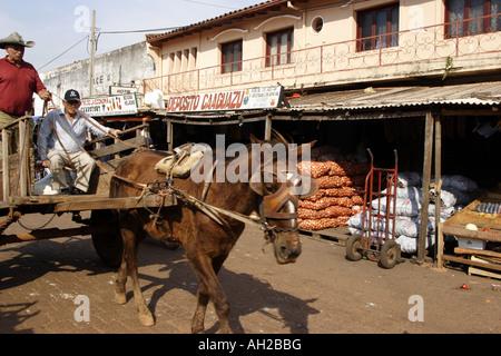 Pferdewagen - Stockfoto