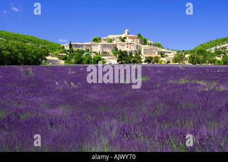 Hügel Dorf Banon über Lavendel Provence Frankreich angesehen - Stockfoto