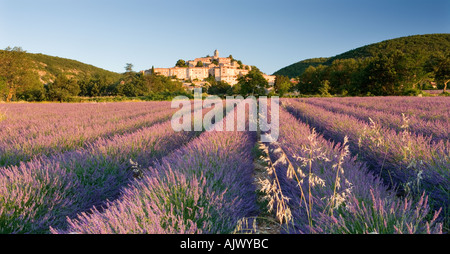 Frankreich-Provence-Blick über Lavendel, Hügel Dorf Banon - Stockfoto