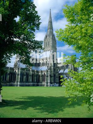 Kathedrale von Salisbury (höchste spire in England), Wiltshire, England - Stockfoto
