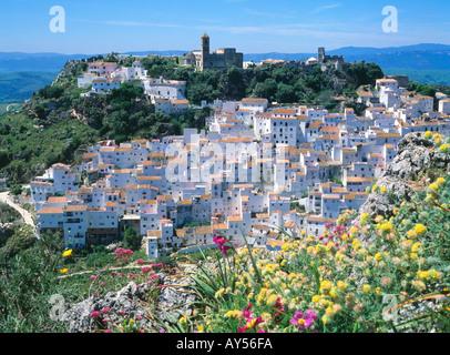 Casares weiße Dorf Costa Del Sol, Provinz Malaga Andalusien Spanien. Wilde Blumen - Stockfoto