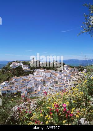 Casares geschmückt mit Wildblumen weißes Dorf Costa Del Sol-Provinz Malaga Andalusien Andalusien-Spanien - Stockfoto