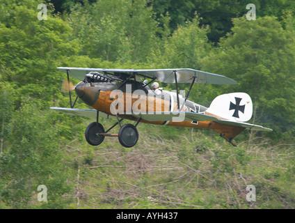Albatros-Doppeldecker im Flug - Stockfoto