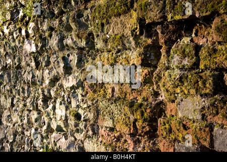 Eine alte Moos bedeckt Lehmziegel und Flintstone Wand in Medmenham, Buckinghamshire, England. - Stockfoto