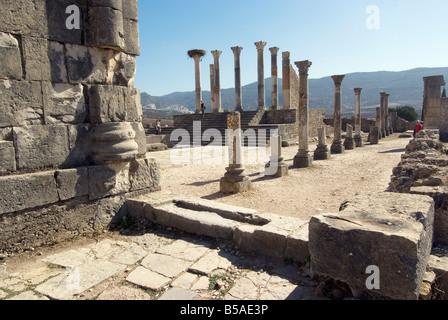 Forum römische Stätte von Volubilis UNESCO World Heritage Site Marokko Nordafrika Südafrika - Stockfoto
