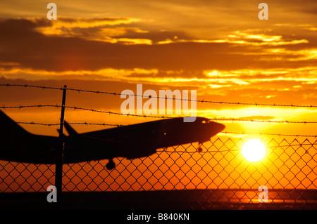 Ein startendes hinter einem Zaun am Dia. - Stockfoto