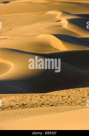 Khuri Wüste Rajasthan Indien - Stockfoto