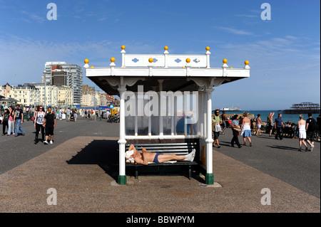 Mann in einem Tierheim auf Hove Strandpromenade UK Sonnenbaden - Stockfoto