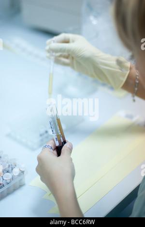 Hände einer Frau sind ein Reagenzglas mit Blut mit Hilfe einer Pipette füllen. - Stockfoto