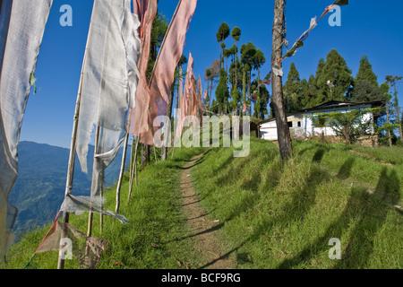 Indien, Sikkim, Pelling, Sangachoeling Gompa, die zweite älteste Gompa in Sikkim - Stockfoto