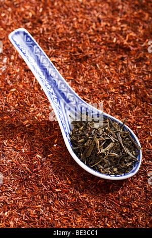 Grüner Tee in asiatischen Löffel auf Rooibos Tee - Stockfoto