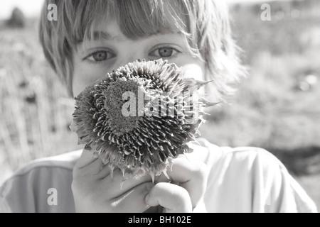 Nahaufnahme eines jungen hält eine getrocknete Sonnenblume - Stockfoto