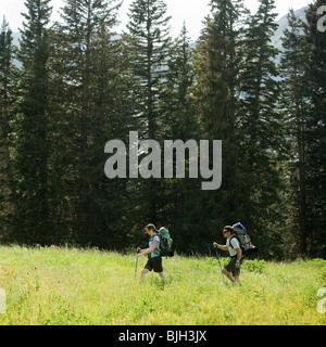 Rucksacktouristen, die durch die Wildnis wandern - Stockfoto