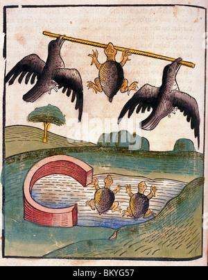 Zwei Vögel fliegen mit Schildkröte, vom Buch der Weisheit der Alten Schwerpunktfeldern, USA, Illinois, Chicago, - Stockfoto