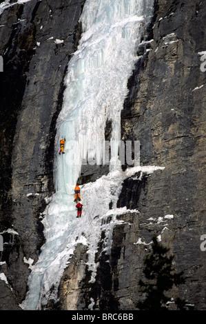 Banff Nationalpark, Alberta, Kanada - Eisklettern am Weinen Wand entlang Icefields Parkway, kanadischen Rocky Mountains, - Stockfoto
