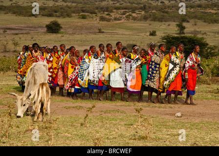 Kenia frau sucht mann