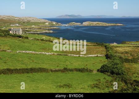 grüne Felder und ein kleines Bauernhaus an der Küste der Halbinsel Beara in der Provinz Munster; County Cork, Irland - Stockfoto